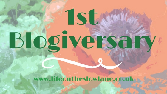 1 Year Old Today! | Blogiversary