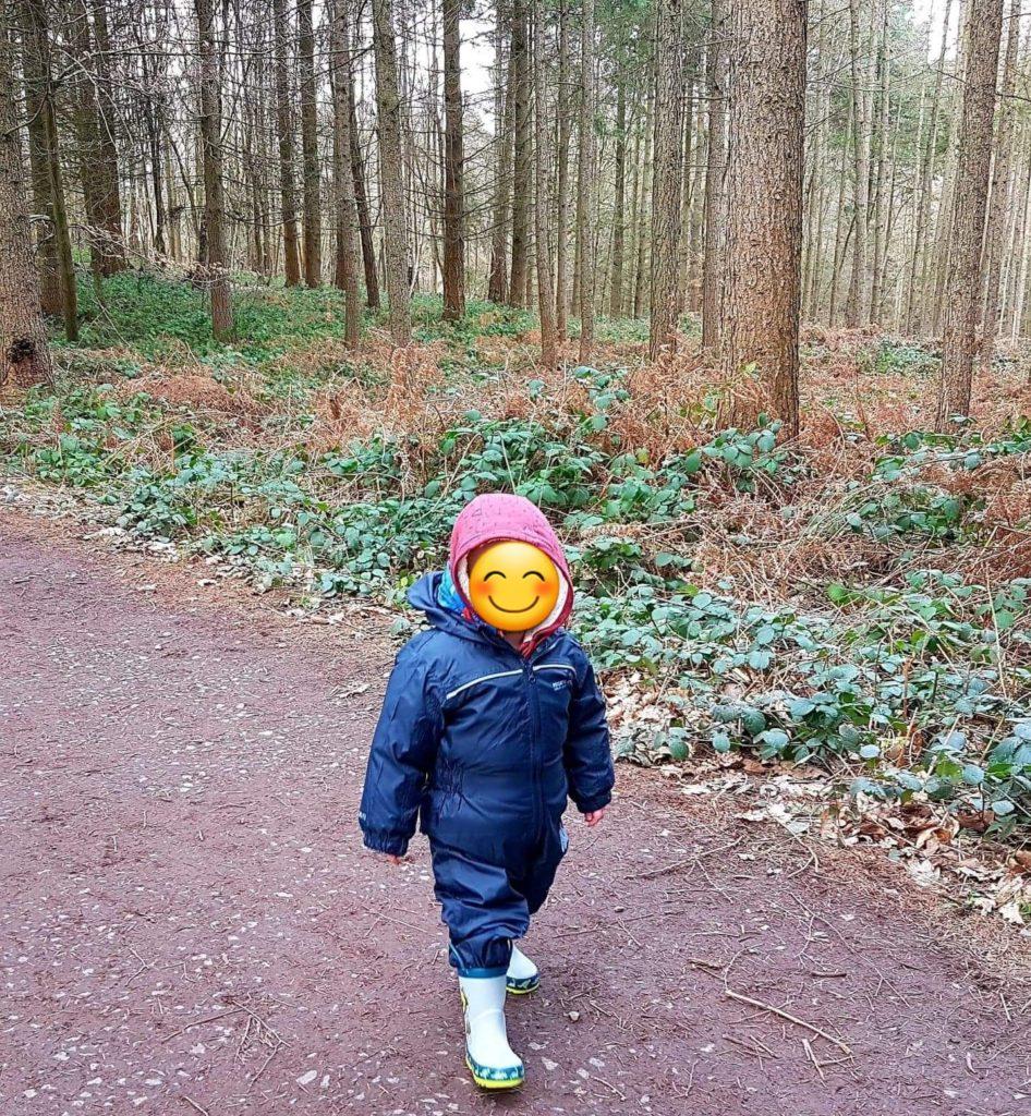 My nephew on a woodland walk