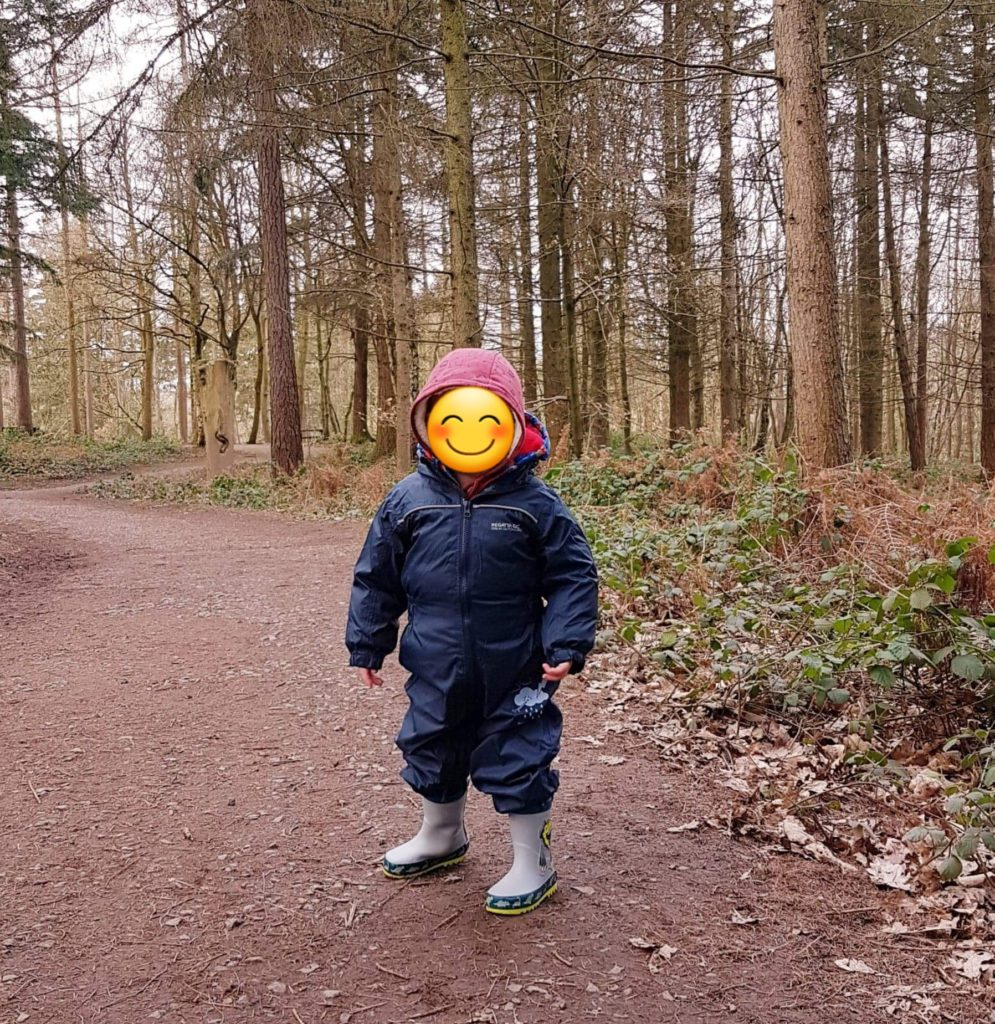 My nephew on a woodland walk
